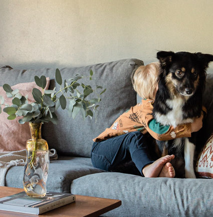 Kuinka totuttaa lapsi koiriin ja koirat lapseen?